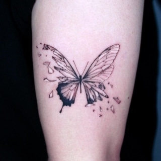 Shattered Butterflly